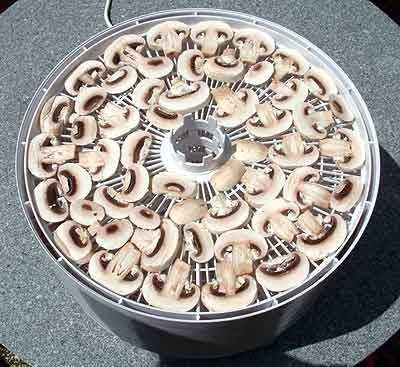 Жаркое с грибами в горшочках